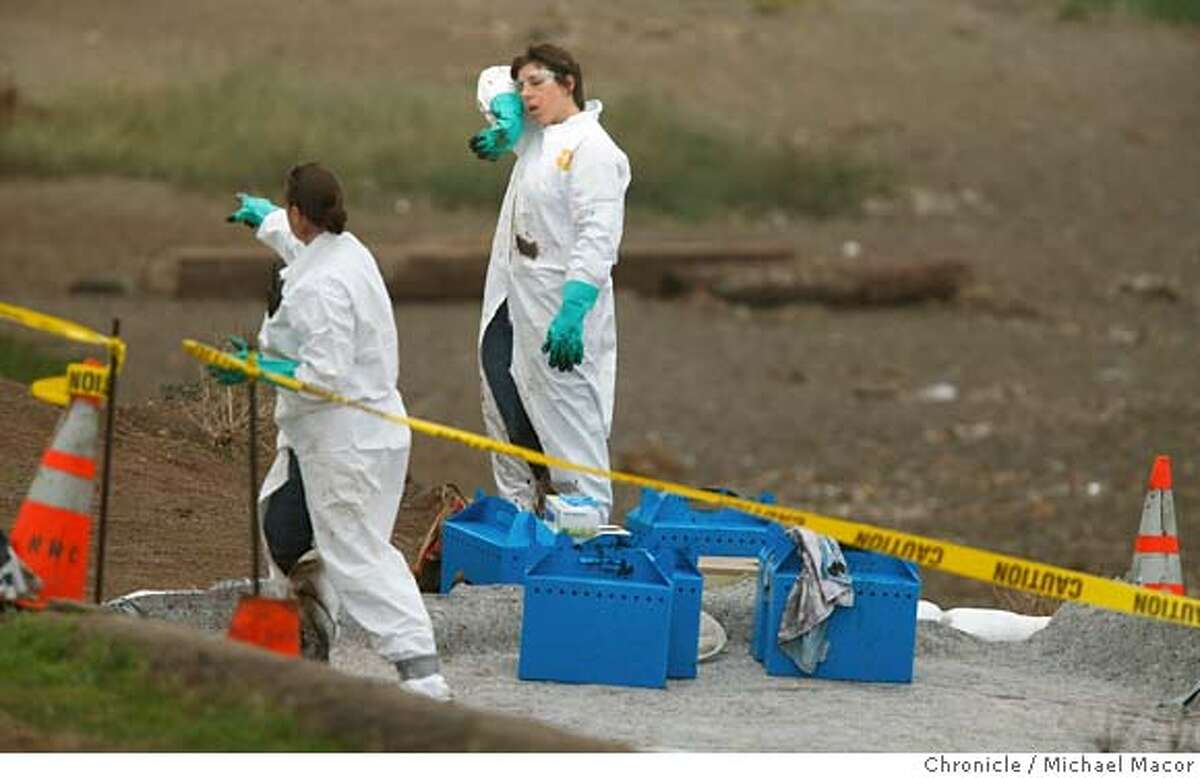 oilspill09_0328_mac.jpg Heather Harris,(left) and Erin Brodie are with the Marine Mammal Center, collecting shorebirds along Rodeo Beach on behalf of Oiled Wildlife Care Network who will clean the oil soaked birds. After the collision of the Cosco Busan container ship with a tower footing of the Bay Bridge yesterday morning , clean up crews begins the work of containing and cleaning up the spilled oil as it reaches nearby San Francisco Bay beaches. photog} / The Chronicle Photo taken on 11/8/07, in San Francisco, GA, USA