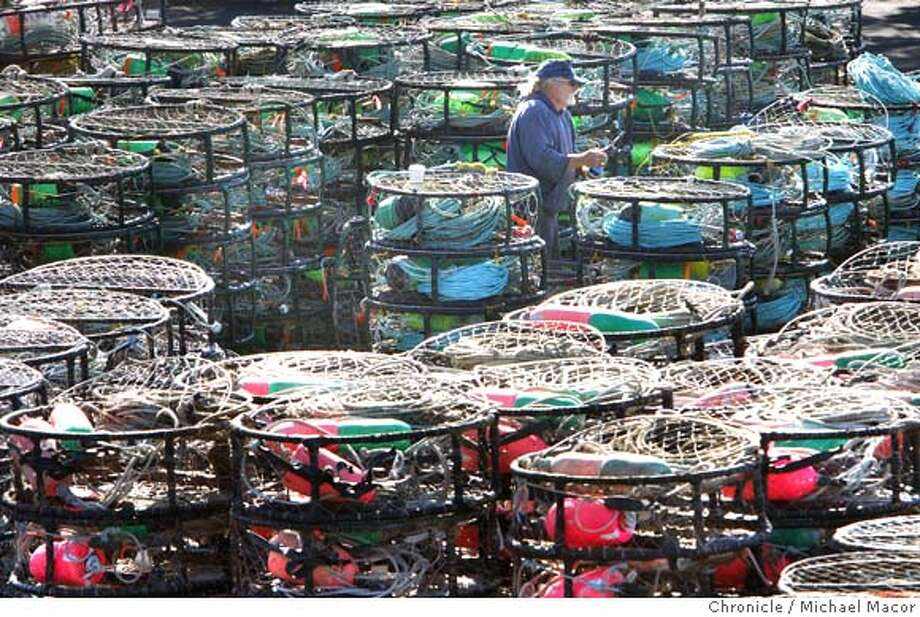 spill_crabs_166_mac.jpg Crab fisherman Bob Longstreth has been fishing for the past 32 years. The parking lot above the harbor is filled with crab pots waiting to be loading onto the fishing boats when word comes that the crab season is open and the crabs are safe. With the opening of Crab season today, fisherman at Pillar Point Harbor, in Half Moon Bay, are leaving their boats in the dock as the concern of contamination from last weeks oil spill may have affected the product. Michael Macor / The Chronicle Photo taken on 11/15/07, in Half Moon Bay, CA, USA Photo: Michael Macor