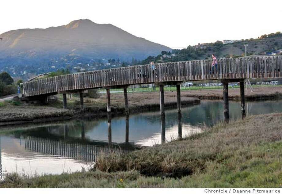 Birds can be seen in adundance at Bothin Marsh in Marin County. Photo: Deanne Fitzmaurice