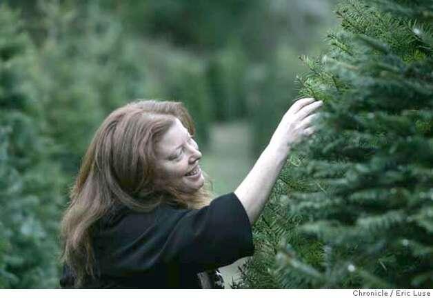 Balsam Fir Fake Christmas Tree