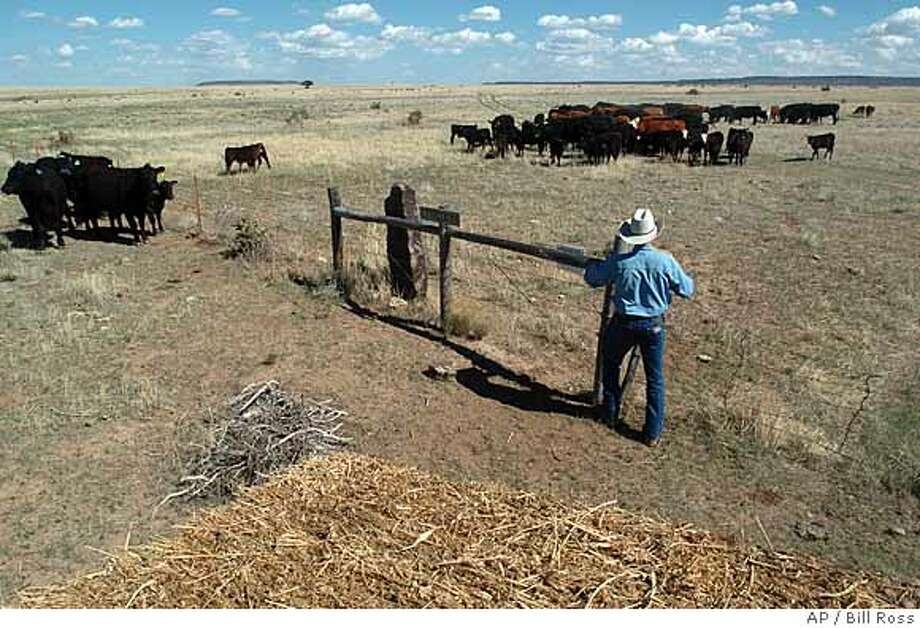 ** ADVANCE FOR WEEKEND, JUNE 17-18 **Lon Robertson closes a gate separating two pastures on his property near Kim, Colo., May 15, 2006. Robertson and other ranchers in the area are concerned about Army plans to expand a training site for National Guard at the canyon. (AP Photo/Bill Ross) Photo: BILL ROSS
