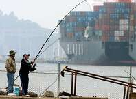 A fisherman reels in his line while fishing in Alameda, Calif. in the Oakland Estuary not far from the Cosco Busan (background) as it's cargo is removed at the Port of Oakland on Saturday, Nov. 10, 2007. The 810-foot long vessel, which struck a Bay Bridge tower in heavy fog Wednesday and spilled 58,000 gallons of oil into the bay, was towed back to port Friday night so it's cargo could be off-loaded.  PAUL CHINN/The Chronicle