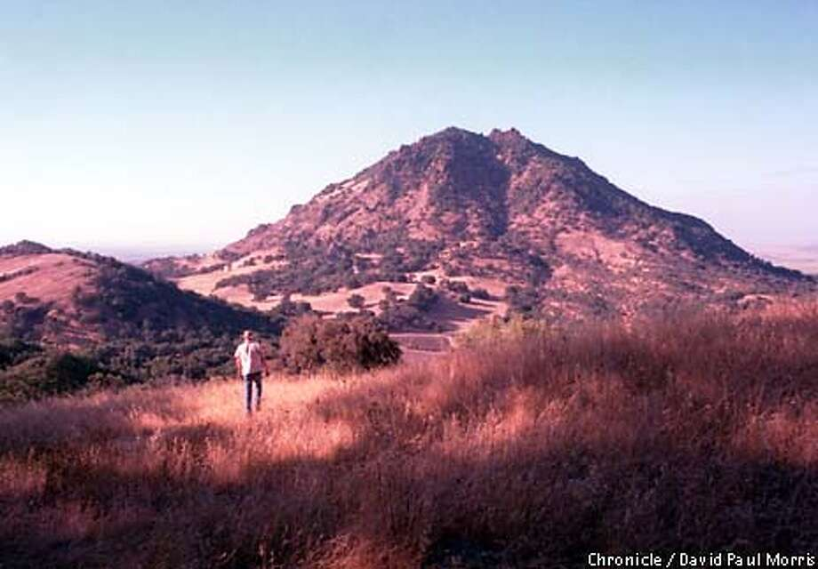 Sutter Buttes has a wide variety of plants and animals. Chronicle photo by David Paul Morris