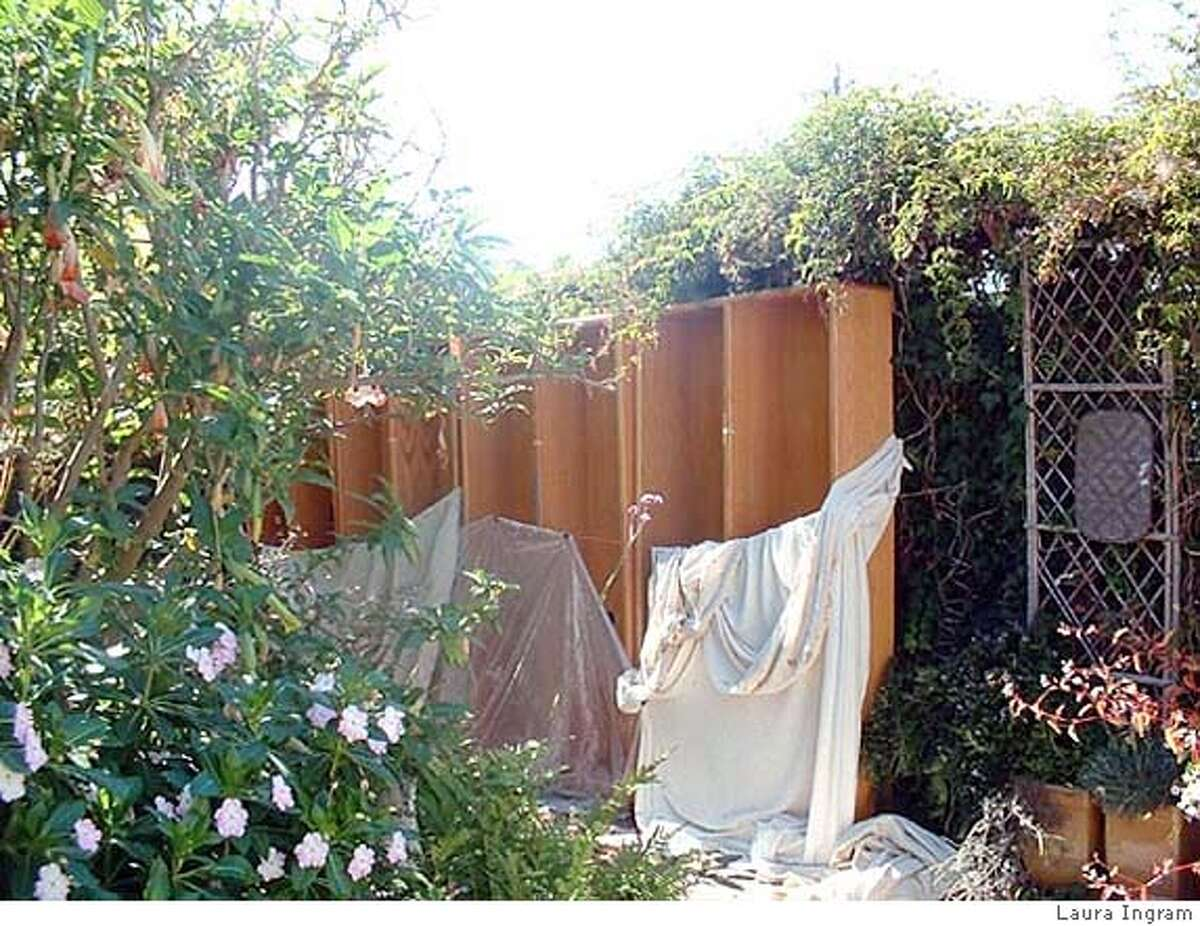 Laura Ingram planted shelves in her garden in hopes that they'd lose their irritating odor.