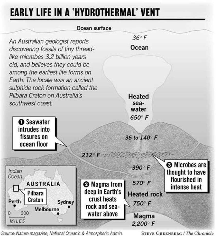 Early Life in a 'Hydrothermal' Vent. Chronicle Graphic
