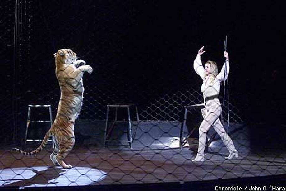 Sara the Tiger Whisperer shared the ring with her charge at the Ringling Bros. and Barnum & Bailey Circus. Chronicle photo by John O'Hara / Chronicle