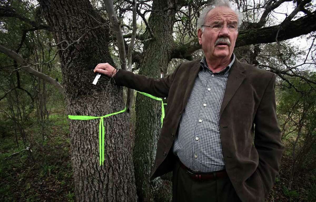 Former San Antonio Mayor Phil Hardberger, who is also the President of Phil Hardberger Park Conservancy, inspects trees that have been tagged on the property next to Hardberger Park, that is a proposed site for a new Walmart.
