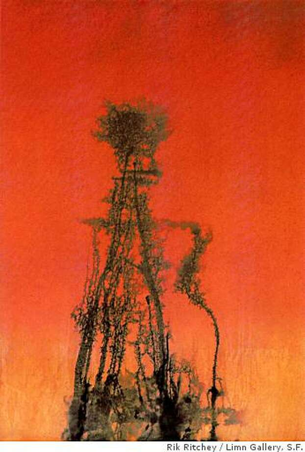 """Aneurysm"" (1994) polyurethane and acrylic by Rik Ritchey76"" x 54"" x 1"" Photo: Rik Ritchey, Limn Gallery, S.F."