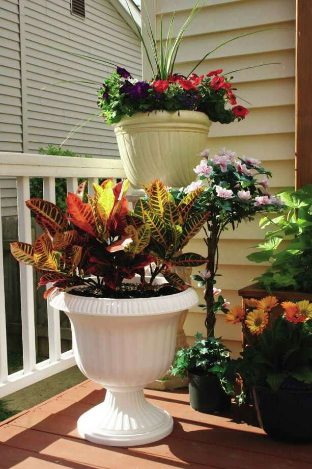 Decorative containers come in a variety of shapes, colors and heights. Photo: Jenni Mattinson, Scotts Co.
