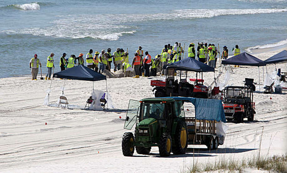 Oil spill workers continue the process of cleaning tar balls and oil from the beaches of Orange Beach, Ala., Tuesday, Nov. 9, 2010. A BP official said deep cleaning operations would continue along the coast for some time. Photo: Dave Martin, AP
