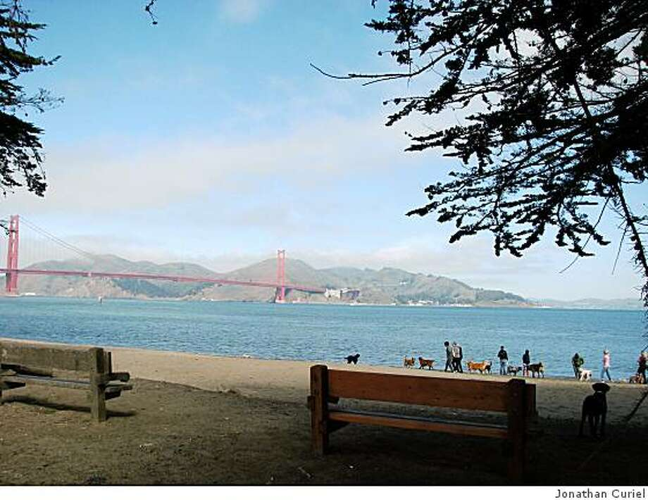 wooden bench at crissy field Photo: Jonathan Curiel