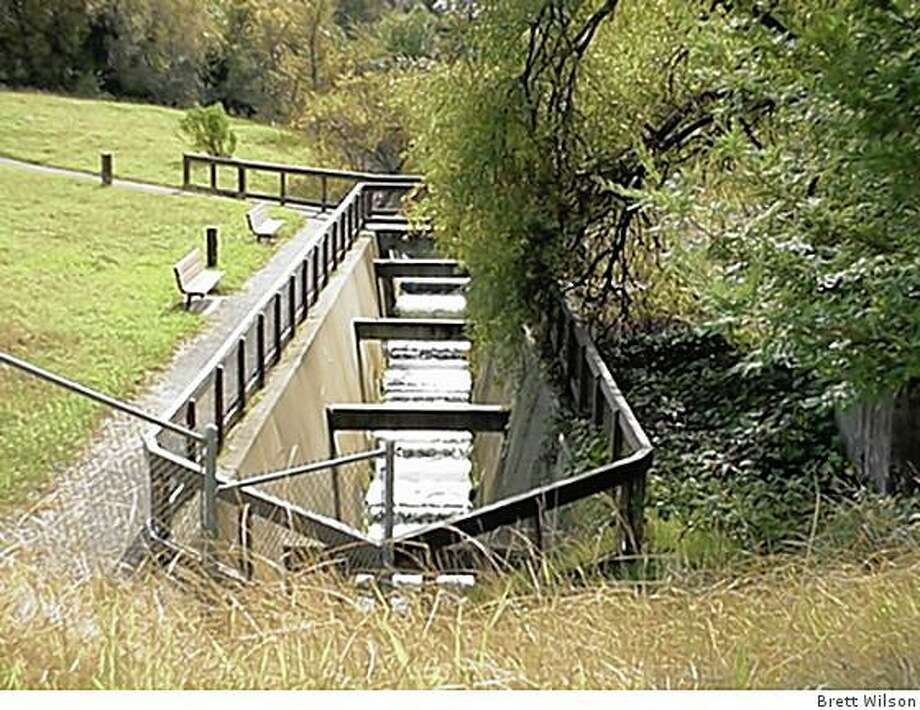 Benches for viewing fish ladder at the Wrm Springs Fish Hatchery. Photo: Brett Wilson