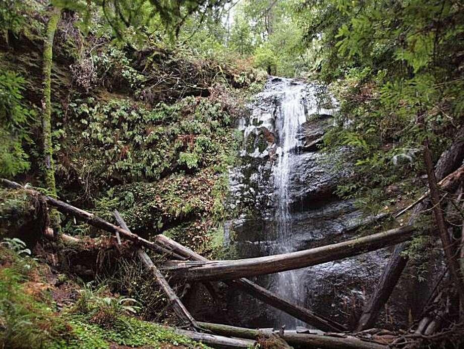 Silver Falls at Big Basin Redwoods State Park Photo: Scott Peden