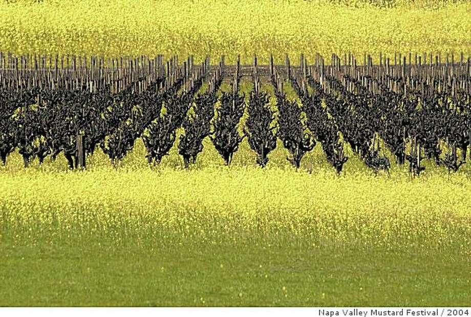 Napa Valley Mustard Festival Photography Contest winner by Bob Story from 2004 Photo: Napa Valley Mustard Festival, 2004