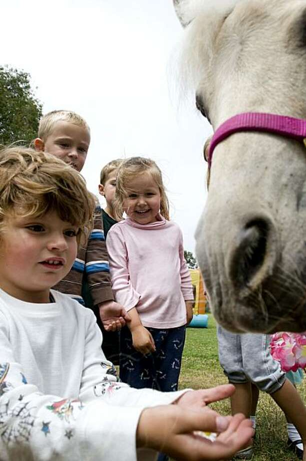 Birthday boy Roman gets up close and personal with Cupcake, the pony during his birthday party hosted by his mom, Julian Guthrie, at Julius Kahn Park in San Francisco, Calif., on Saturday, July 24, 2010 for her son, Roman, and friend, Jacqueline. Photo: Chad Ziemendorf, The Chronicle