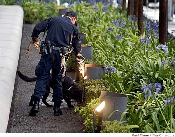 A police K-9 unit searches the bushes in front of the Earl Warren State Buiulding before the California State Supreme Court hears arguments over the constitutionality of Proposition 8 in San Francisco, Calif., on Thursday, March 5, 2009. California voters approved the initiative in last November's statewide election. Photo: Paul Chinn, The Chronicle