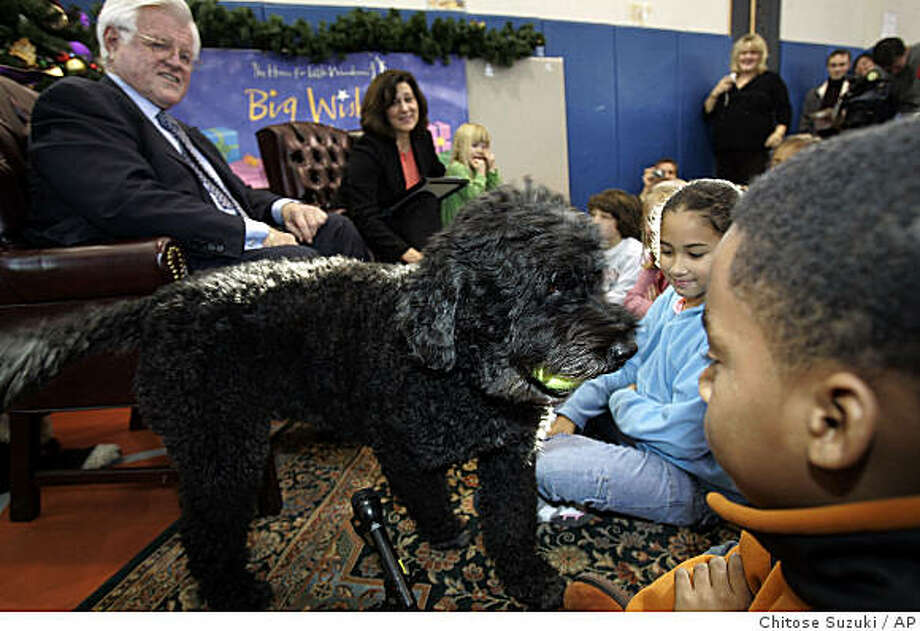 """** FILE ** This Nov. 27, 2006 file photo shows Portuguese water dog """"Splash,"""" U.S. Sen. Edward Kennedy's dog, as he approaches  Nicholas Davis, 9, of Boston, right, while Kennedy reads to children at the Knight Children's Center in Boston. Kennedy's wife Victoria Reggie Kennedy, background, looks on. First lady Michelle Obama has told People magazine the family is considering getting a Portugese water dog, possibly in April. (AP Photo/Chitose Suzuki, File) Photo: Chitose Suzuki, AP / ONLINE_CHECK"""