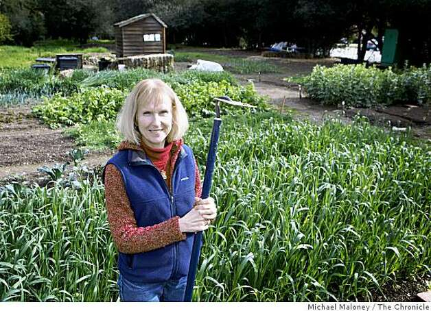 Patricia Becker, director of nonprofit Common Ground Organic Garden Supply and Education Center in Palo Alto, Calif., poses for a photo in their demonstration garden on Wednesday, February 18, 2009. Photo: Michael Maloney, The Chronicle