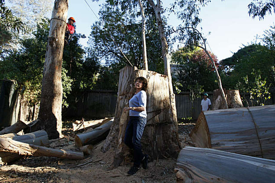 Anne Wolff poses in front of her eucalyptus tree trunks that have been cut down since she lost a legal battle against neighbors in Larkspur, Cailf., on Oct. 15, 2010.   The court has ordered 28 of the eucalyptus trees to be chopped down after a succession of judges ruled that the invasive trees are a menace and fire danger. Photo: Michelle Gachet, The Chronicle