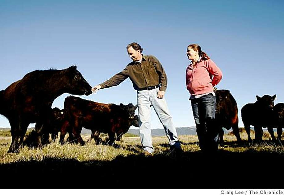 Bill Niman and his wife, Nicolette, with their cows in Bolinas, Calif., on January 29, 2009. Bill Niman founded Niman Ranch meat company. Photo: Craig Lee, The Chronicle