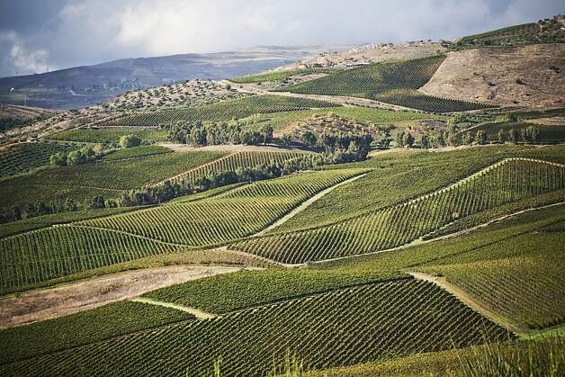 Tasca d'Almerita's Regaleali estate,  home to vineyards reaching almost 3,000 feet above sea level, helped familiarize many buyers with Sicilian whites. Photo: Tasca D'Almerita