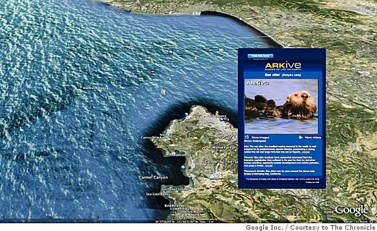 Ocean in Google Earth is a new feature that enables users to dive beneath the water surface and to explore the world's oceans. This handout image shows Monterey Bay on the California coast. Google is also incorporating