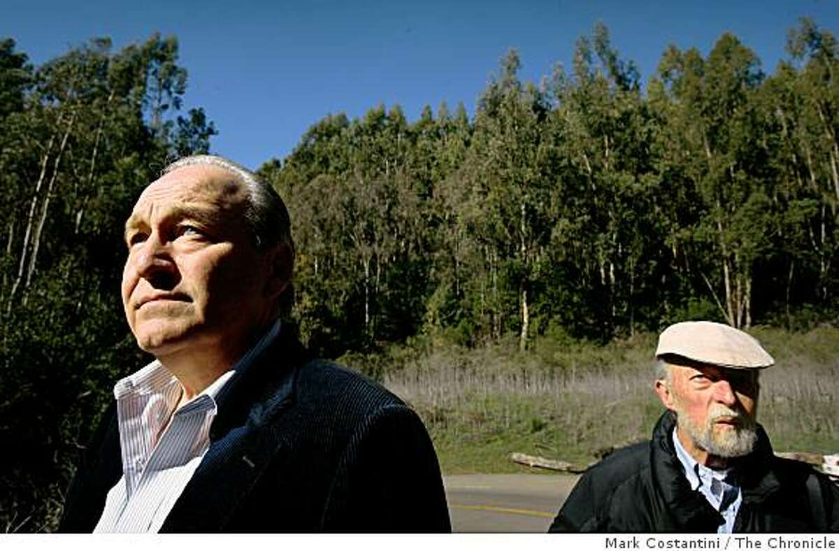 Barry Pilger (left) and Joseph Engbeck who who are advocating for the removal of eucalyptus trees, look at some of the ones they want removed in Oakland, Calif. on Tuesday, January 23. 2009