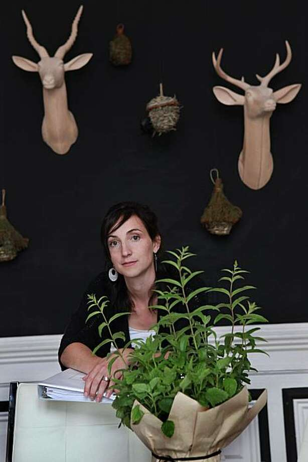 Diy interior design clients get advice for less sfgate - What does it take to be an interior designer ...
