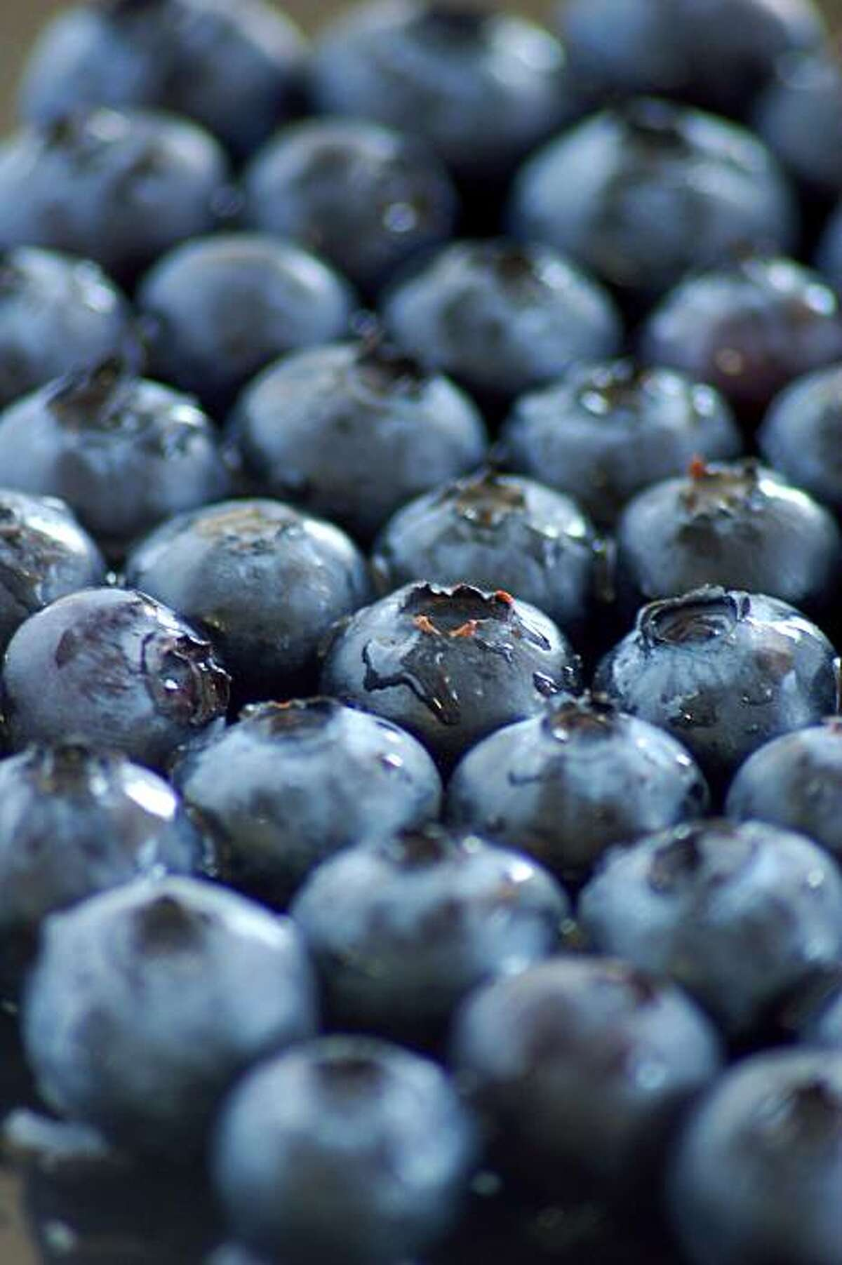 Blueberries are loaded with nutritious compounds, such as antioxidants, anthocyanins and vitamin C. Photo by Matthew T. Stallbaumer/Mother Earth News magazine