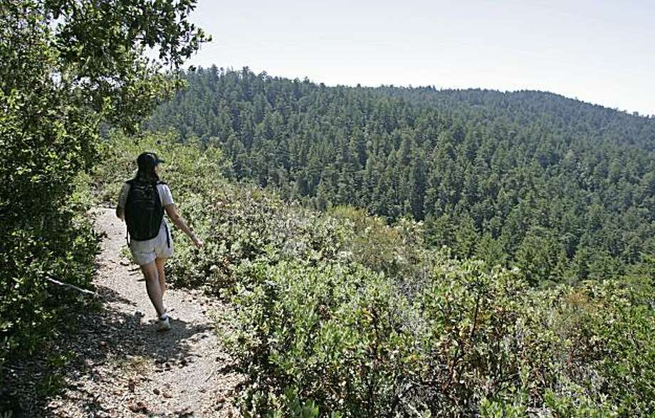Taking the Canyon Trail to the Trail Camp site requires a 5.1 mile hike along Butano Redwood Canyon. Story on things to do in San Mateo County. Photo: Michael Macor, SFC