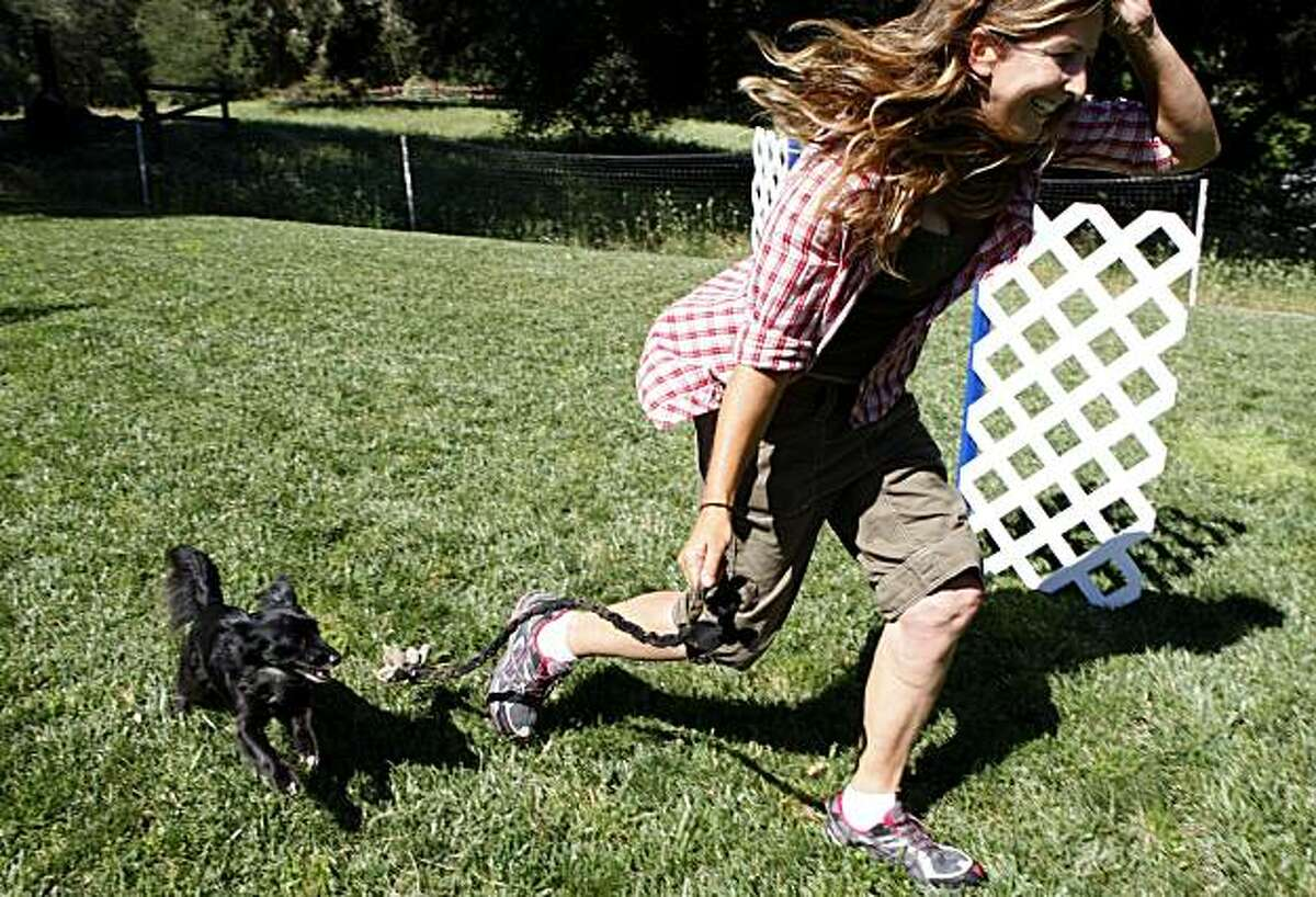 Laura Hartwick runs her chihuahua Gustavo through an agility course on Monday, June 14, 2010 in Ben Lomond, Calif.