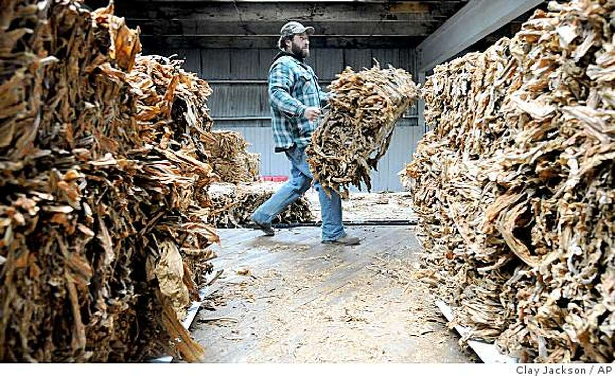 Wayne Gabbard of Junction City helps unload tobacco at Farmer's Tobacco Warehouse in Danville, Ky., on Monday, Nov. 17, 2008, before auction. A decade ago, tobacco seemed destined to wither as cigarette companies shelled out billions to settle lawsuits and smoking bans swept the country. But as a rebound in production this year shows, Big Tobacco and small growers alike have proven resilient, aided by a boost in exports and by new emphasis on smokeless products. (AP Photo/The Advocate Messenger, Clay Jackson)