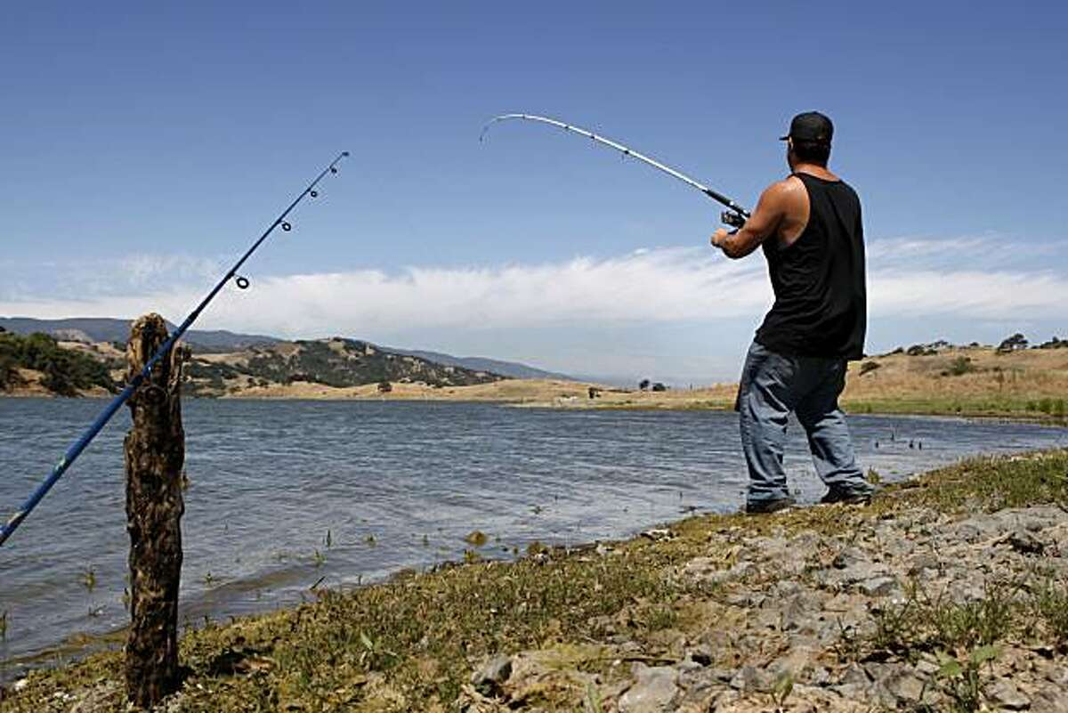 Daniel Ray from San Jose hooks a bass in Calero Reservoir on Friday, June 18, 2010 in Morgan Hill, Calif. Calero is the third largest reservoir in Santa Clara County behind Anderson and Coyote Reservoirs.