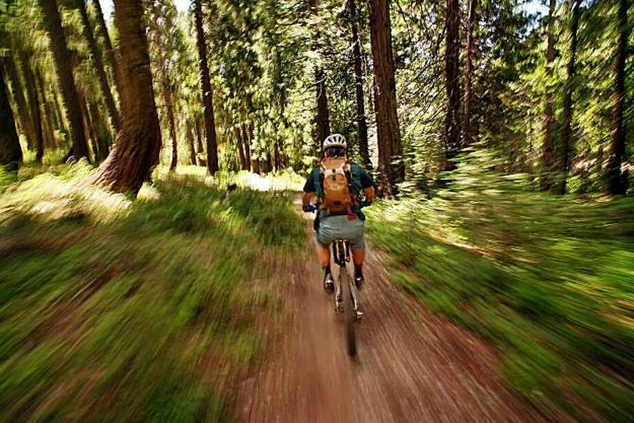 Greg Long cruises along a shady trail on the sometimes perilous ride from the top of the Sierra Buttes to Downieville, Calif., a tiny mountain-biking hub in CaliforniaÕs Gold Country. Illustrates TRAVEL-BIKERS (category t) by Hugo Martin (c) 2007, Los Angeles Times. Moved Tuesday, Sept. 18, 2007. (MUST CREDIT: Los Angeles Times photo by Al Seib.) Photo: Al Seib, TPN