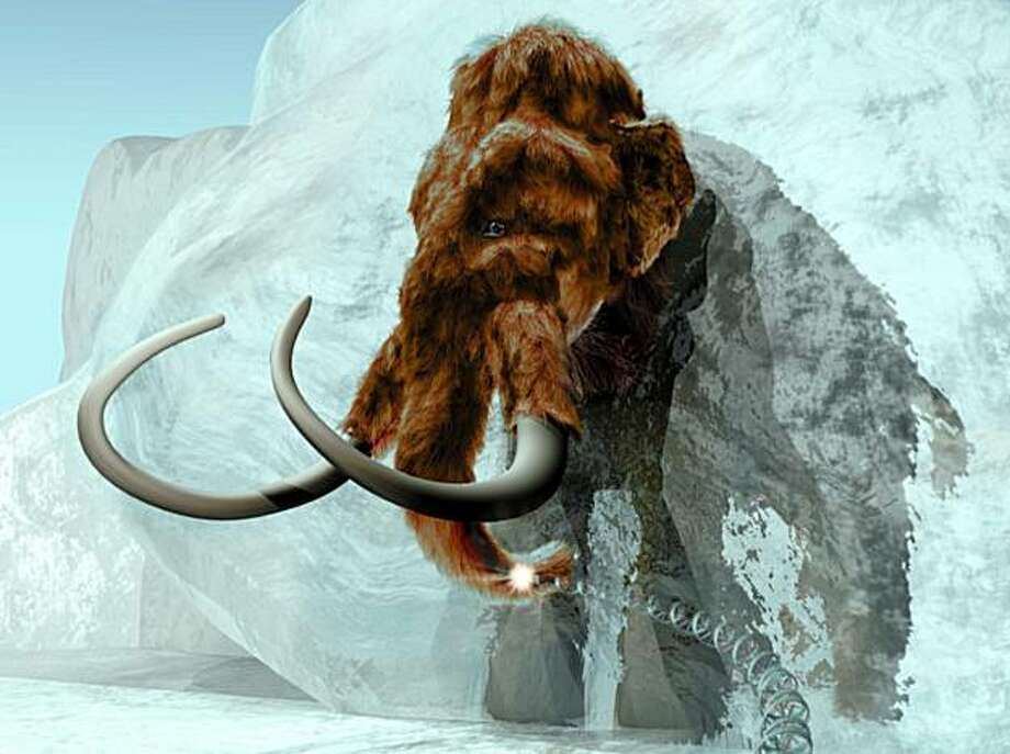 This undated handout provided by ExhibitEase LLC  shows a  3D computer generated Image of woolly mammoth emerging from ice block. A DNA molecule extending from hair symbolizes the fact that genetic analysis can be carried out from long extinct species. Photo: Steven W. Marcus, AP