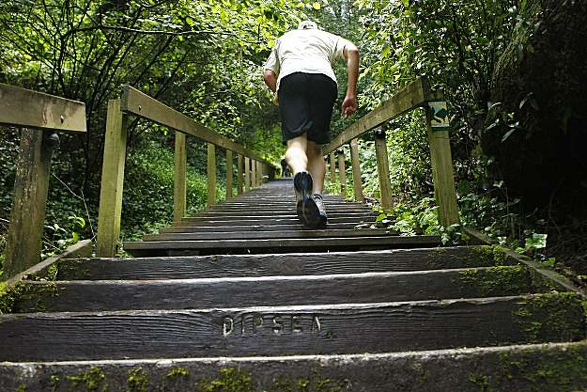 A runner prepares for the Dipsea race at the start of the trail, Friday June 4, 2-1-, in Mill Valley, Calif. This year marks the 100th year of the Dipsia race.