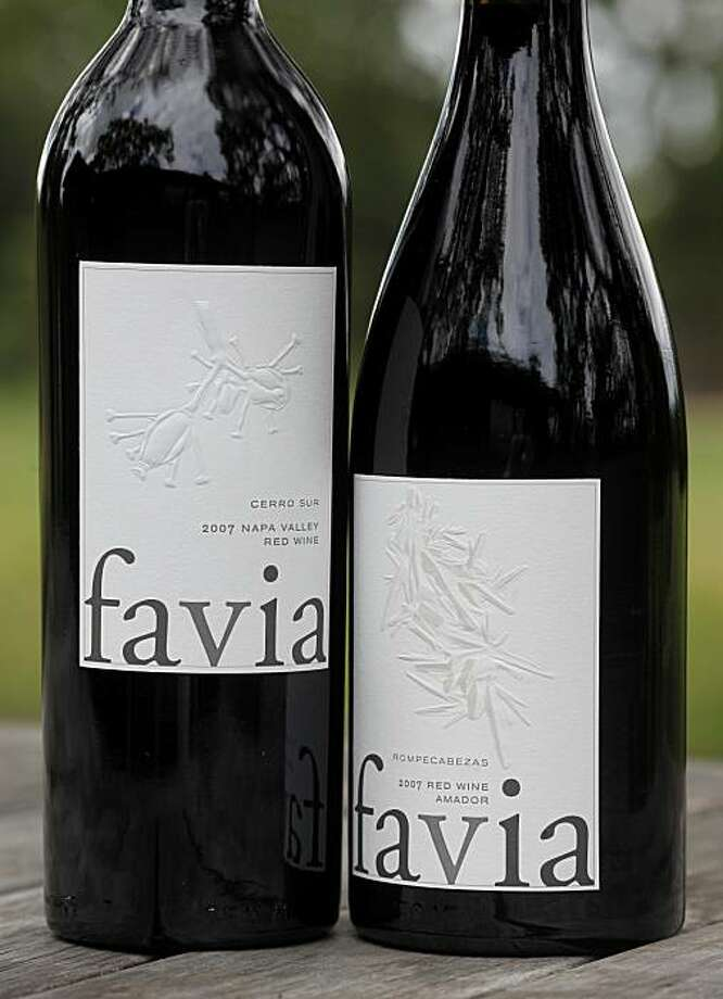 Annie Favia and Andy Erickson have combined their talents with the Favia label. Annie Favia and Andy Erickson are top viticulturists and winemakers in Napa, Calif. They live on the east side of Napa and have established their own wine, Favia. Photo: Brant Ward, The Chronicle