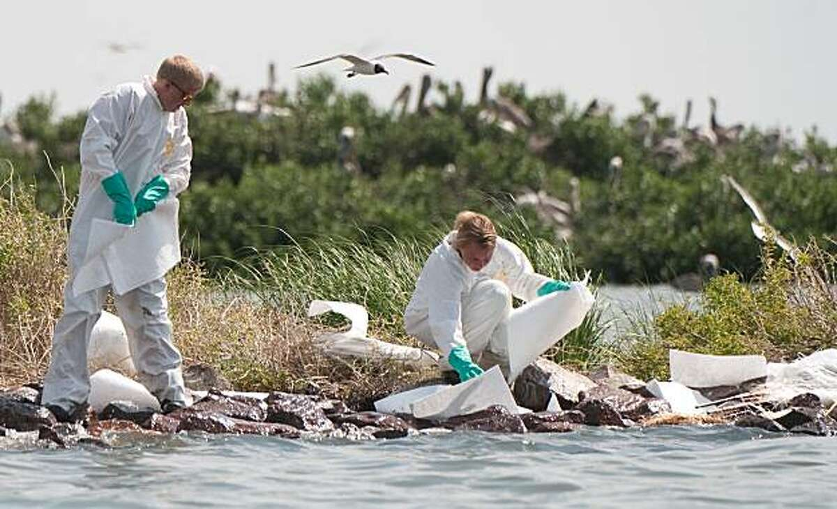 Workers use absorbant pads to try to clean oil from the Pelican Rookery off of Queen Bess Island, near Grand Isle, Louisiana, June 10, 2010, in an area affected by the BP Deepwater Horizon oil spill.