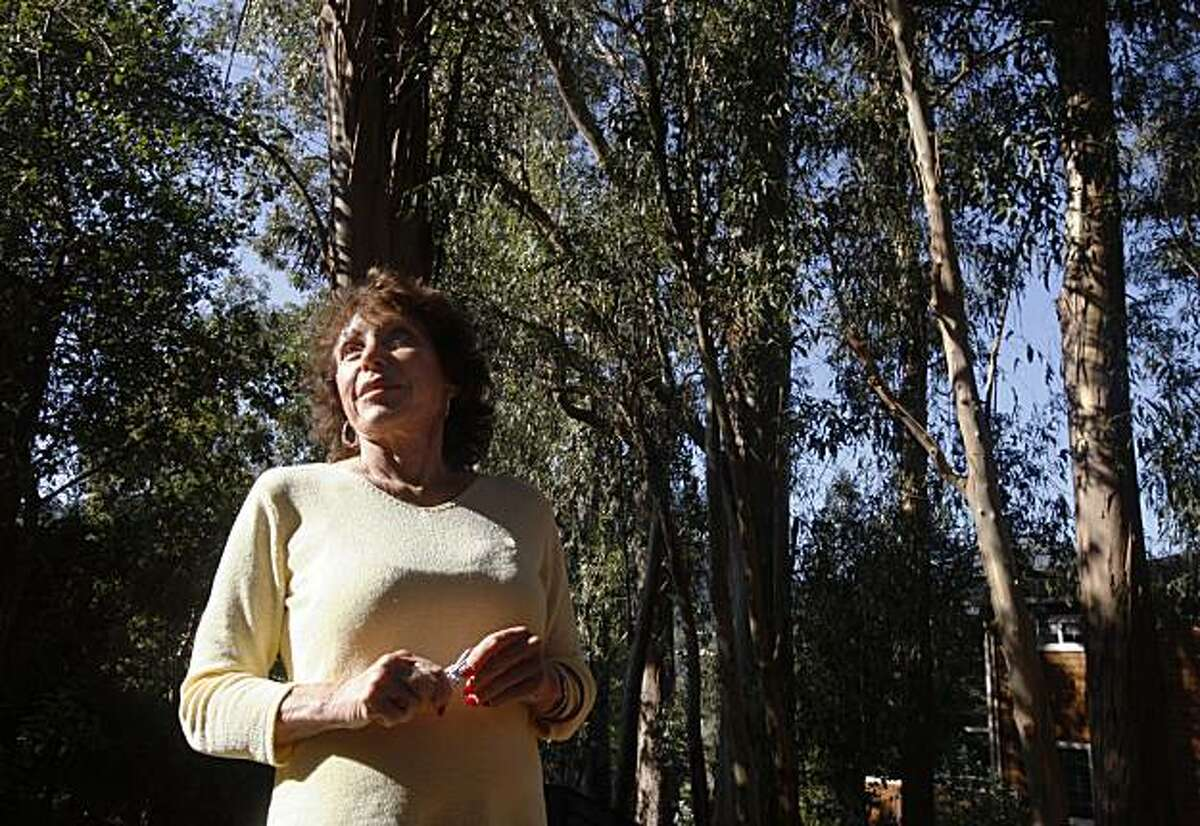 Anne Wolff looks at her grove of eucalyptus trees in the backyard of her home in Larkspur, Calif., on Thursday, Nov. 12, 2009. A Marin County judge has ordered Wolff to cut down over 25 of the trees that have been determined to be hazardous to next door neighbors.