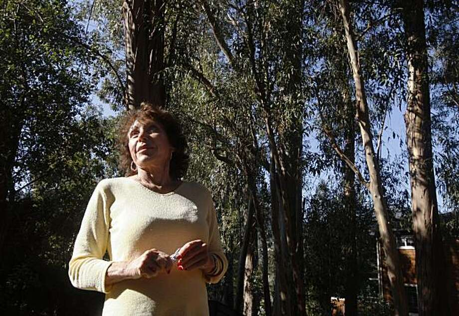 Anne Wolff looks at her grove of eucalyptus trees in the backyard of her home in Larkspur, Calif., on Thursday, Nov. 12, 2009. A Marin County judge has ordered Wolff to cut down over 25 of the trees that have been determined to be hazardous to next door neighbors. Photo: Paul Chinn, The Chronicle