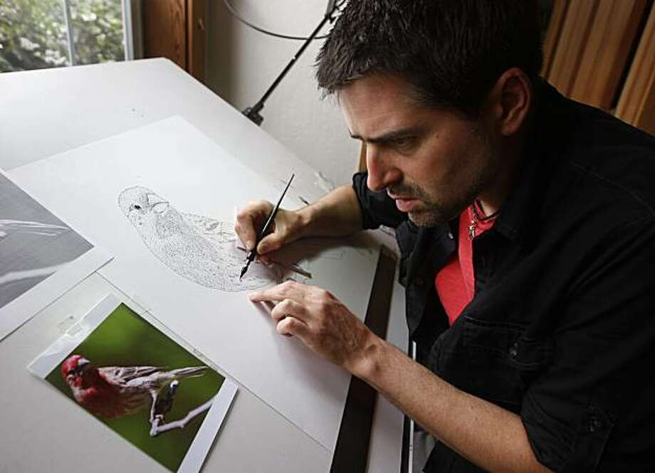 Roger Hall draws an illustration of a house finch at his home in Berkeley, Calif., on Friday, June 4, 2010. Hall will enter a nationwide contest to design a federal duck stamp which will be used to validate hunting licenses. Photo: Paul Chinn, The Chronicle