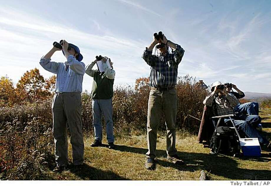**ADVANCE FOR MONDAY OCT. 27**Hawk watchers scan the skies  in Brookline, Vt., Wednesday, Oct. 15, 2008. This time of year when hawks head south soaring over ridge lines and mountaintops, their fans on Putney Mountain and at spots around U.S., Canada and Mexico are watching. On Putney Mountain there's at least one counter on the peak every day, but more often congregate on good days when they expect the hawks to soar. (AP Photo/Toby Talbot) Photo: Toby Talbot, AP