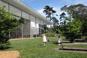 Site: California Academy of Sciences, Music Concourse Drive Location: West Garden