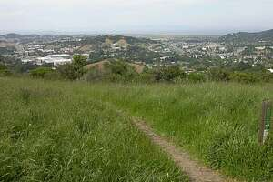 Woman, 65, hurt in Marin trail-rage clash with cyclist - Photo