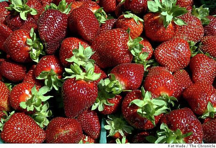 Freshly picked strawberries. Photo: Kat Wade, The Chronicle
