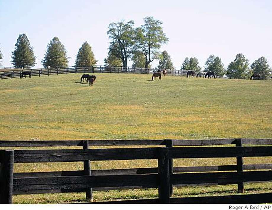 Thoroughbreds graze in a pasture at the Eagle Valley Farm in rural Nicholas County near Carlisle, Ky., on Friday, Oct. 10, 2008. Traditionally a part of Kentucky's famed Bluegrass region, Washington politicians decreed last week that Nicholas County now is in Appalachia, a move that qualifies the community to receive federal funding to bolster its economy. (AP Photo/Roger Alford) Photo: Roger Alford, AP