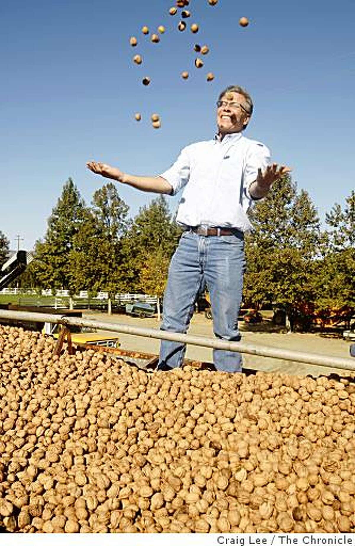 Craig McNamara, proprietor of Dixon Ridge Walnuts, in Winters, Calif., on October 8, 2008.