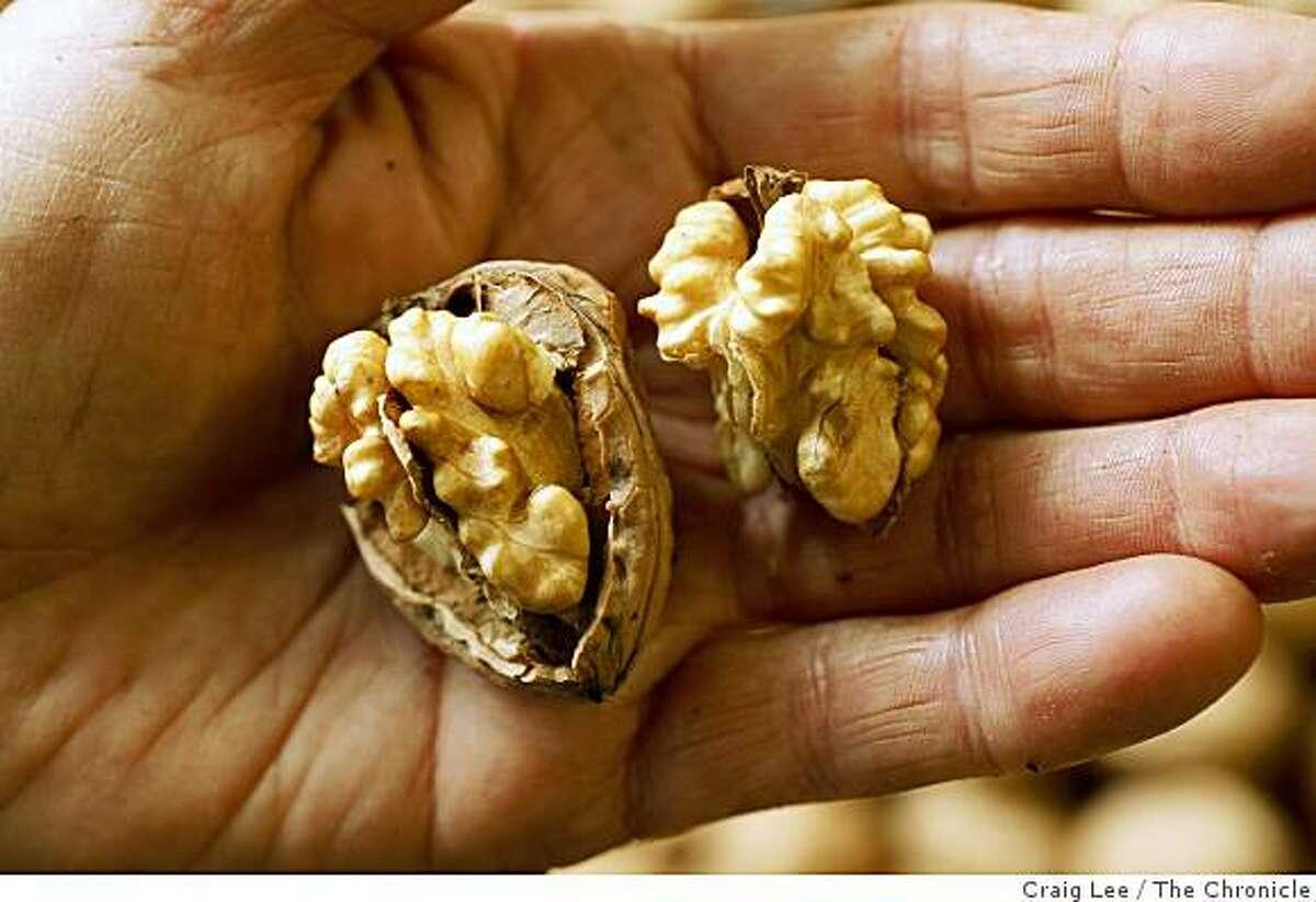 Walnuts at Dixon Ridge Walnuts, in Winters, Calif., on October 8, 2008.