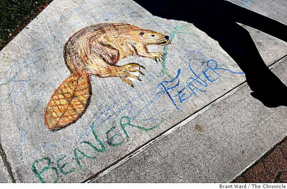 On the shores of Alhambra creek, the city's famous residents are immortalized. As the Martinez city council begins to debate the future of the beaver population in Alhambra creek, citizens and property owners are lining up on both sides of the issue. Photo: Brant Ward, The Chronicle