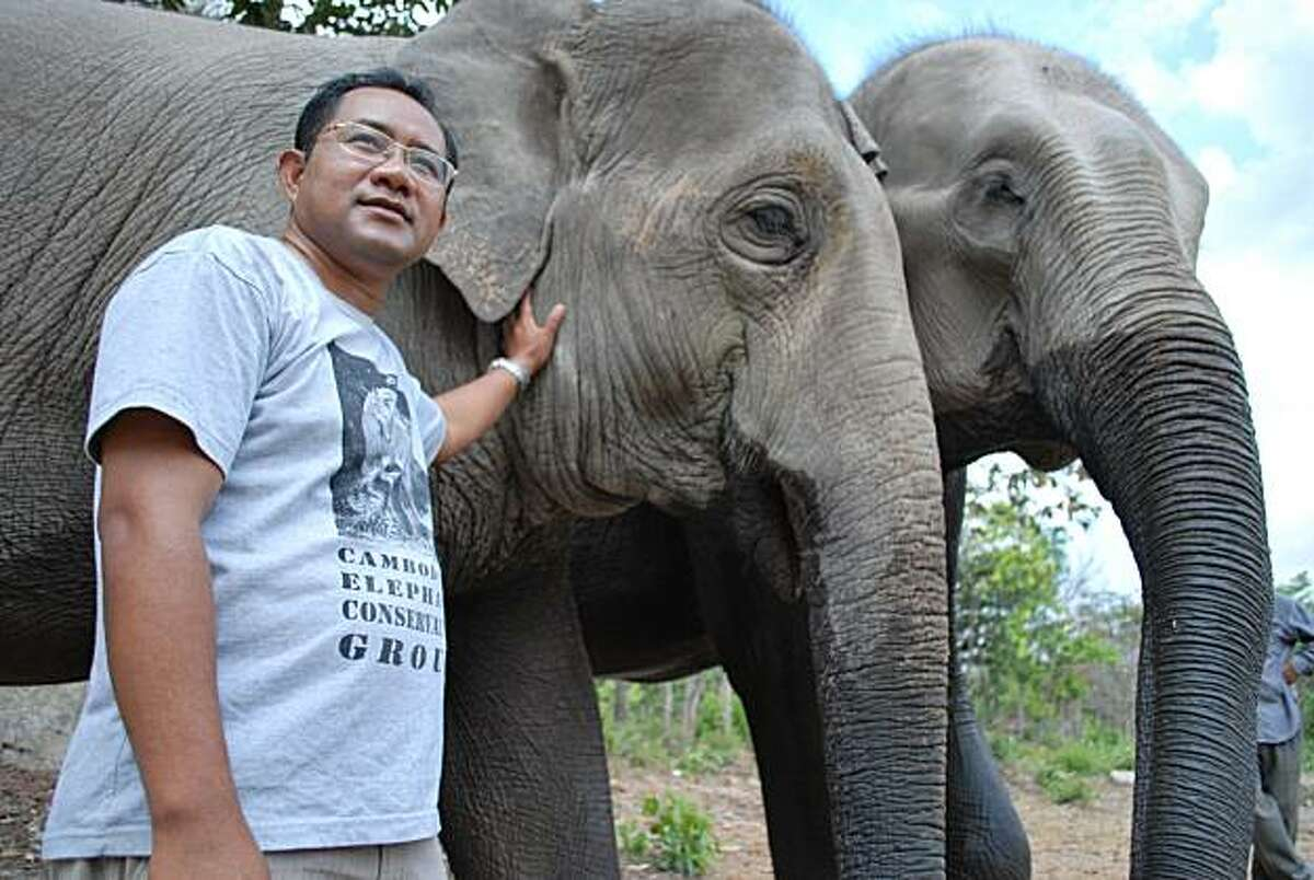Sereivathana Tuy cares for elephants at the Phnom Ta Mao zoo in Takeo, a province in southeastern Cambodia. Tuy, a soft-spoken man known among the villagers as